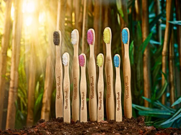 Humble Brush - Bamboo environment